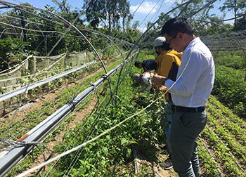 TQC đánh giá và cấp chứng nhận hữu cơ Organic cho Tâm An Farm