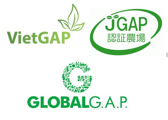 Trung tâm TQC được chỉ định chứng nhận VietGAP trồng trọt bởi Tổng cục TCĐLCL
