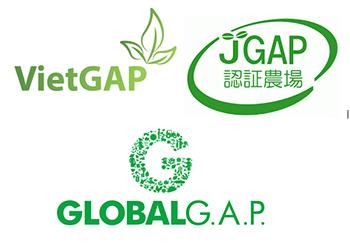 Tổng cục TCĐLCL chỉ định TQC chứng nhận VietGAP trồng trọt