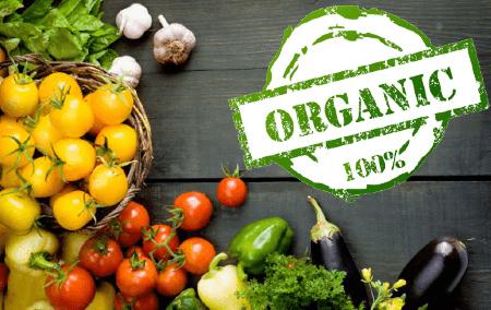 Trung tâm TQC được chỉ định chứng nhận hữu cơ - Organic bởi Tổng cục TCĐLCL