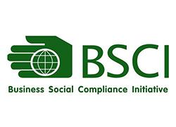 Tư vấn, đào tạo, chứng nhận BSCI trách nhiệm xã hội trong kinh doanh