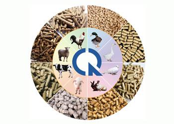 Chứng nhận hợp quy thức ăn chăn nuôi