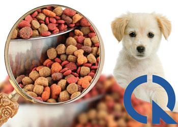 Chứng nhận hợp quy thức ăn cho động vật cảnh