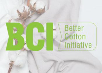 Đào tạo, chứng nhận BCI (Better Cotton Initiative)