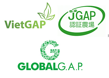 VietGAP trồng trọt là gì ? và các yêu cầu ?