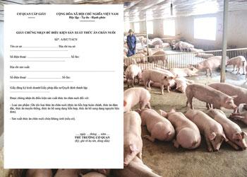 Xin giấy chứng nhận đủ điều kiện sản xuất thức ăn chăn nuôi