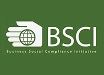 Tư vấn, đào tạo đạt chứng nhận BSCI trách nhiệm xã hội trong kinh doanh
