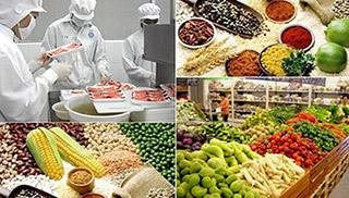 Dịch vụ kiểm nghiệm thực phẩm thường