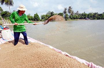 Chứng nhận sản phẩm thức ăn thủy sản