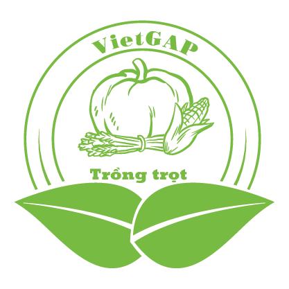 Dịch vụ chứng nhận VietGAP trồng trọt